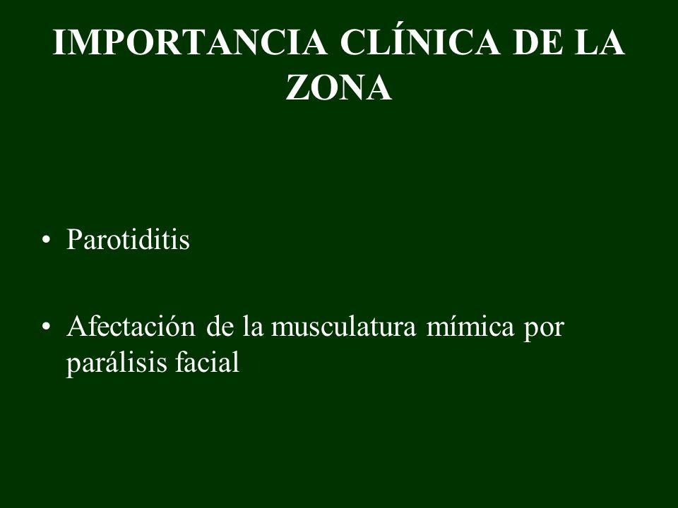 IMPORTANCIA CLÍNICA DE LA ZONA