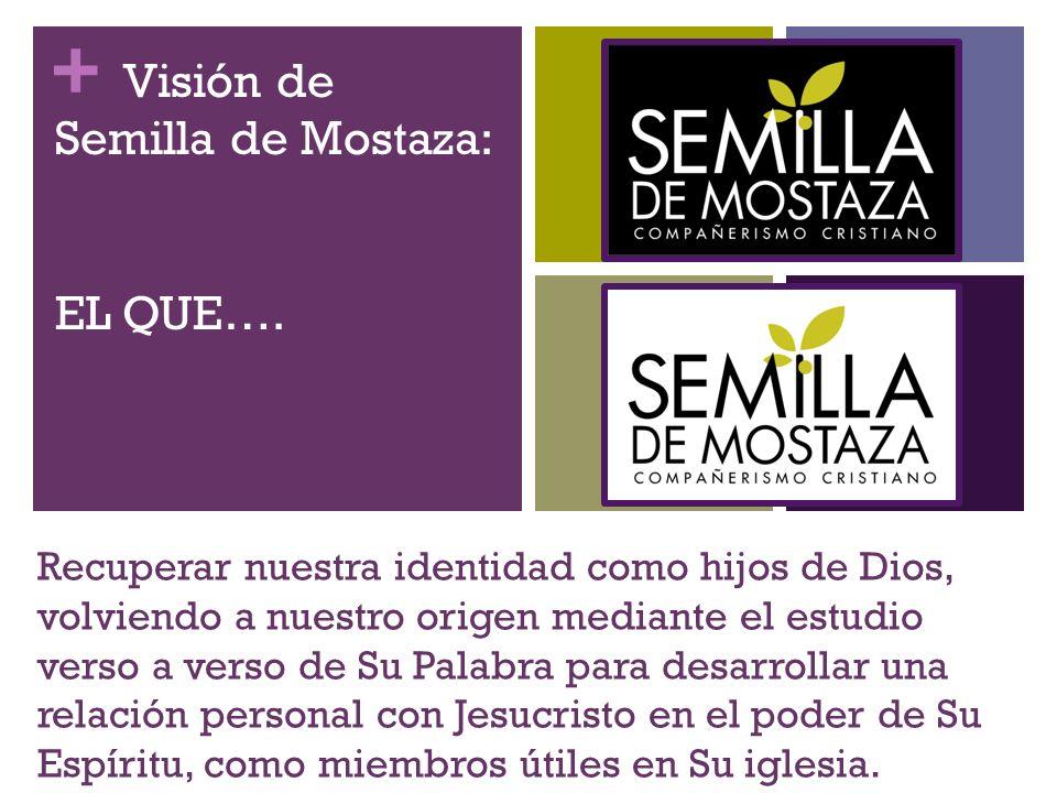Visión de Semilla de Mostaza: