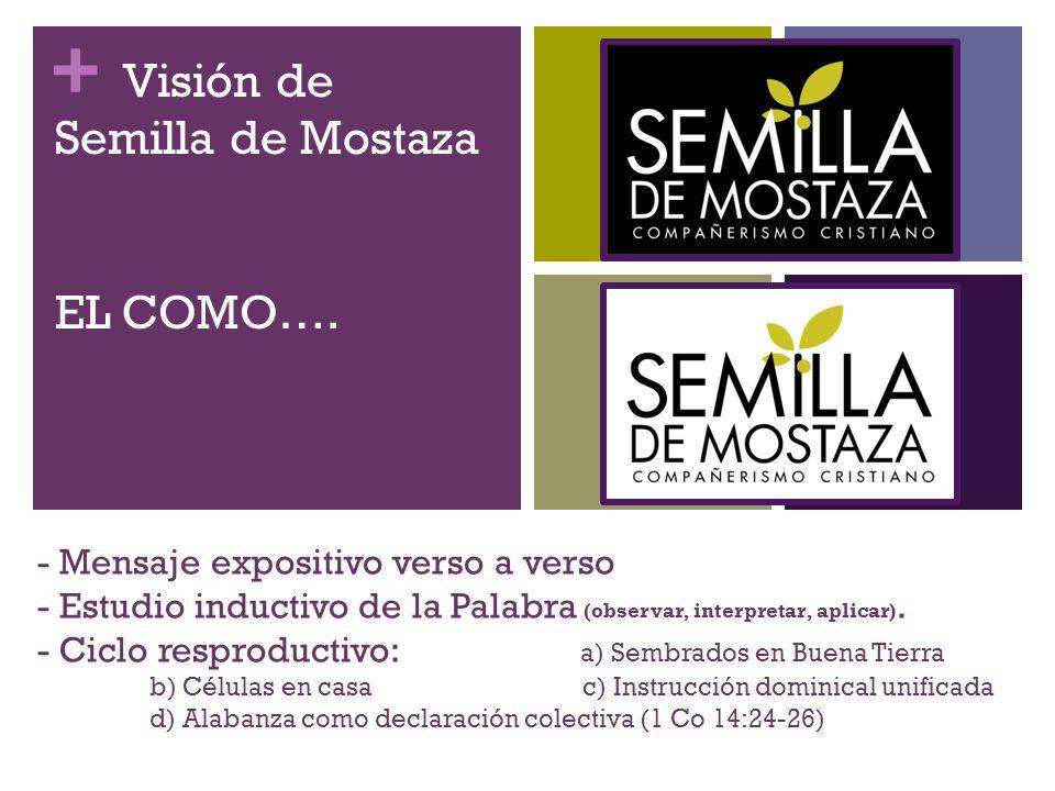 Visión de Semilla de Mostaza