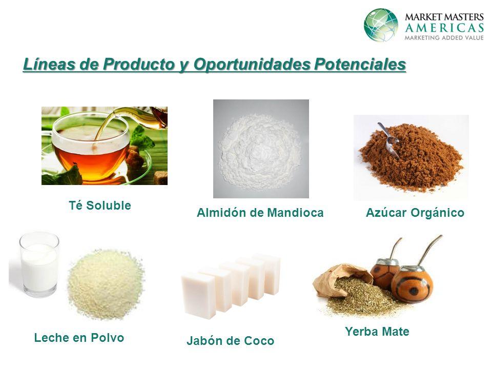 Líneas de Producto y Oportunidades Potenciales