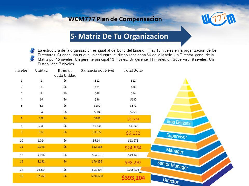 5· Matriz De Tu Organizacion