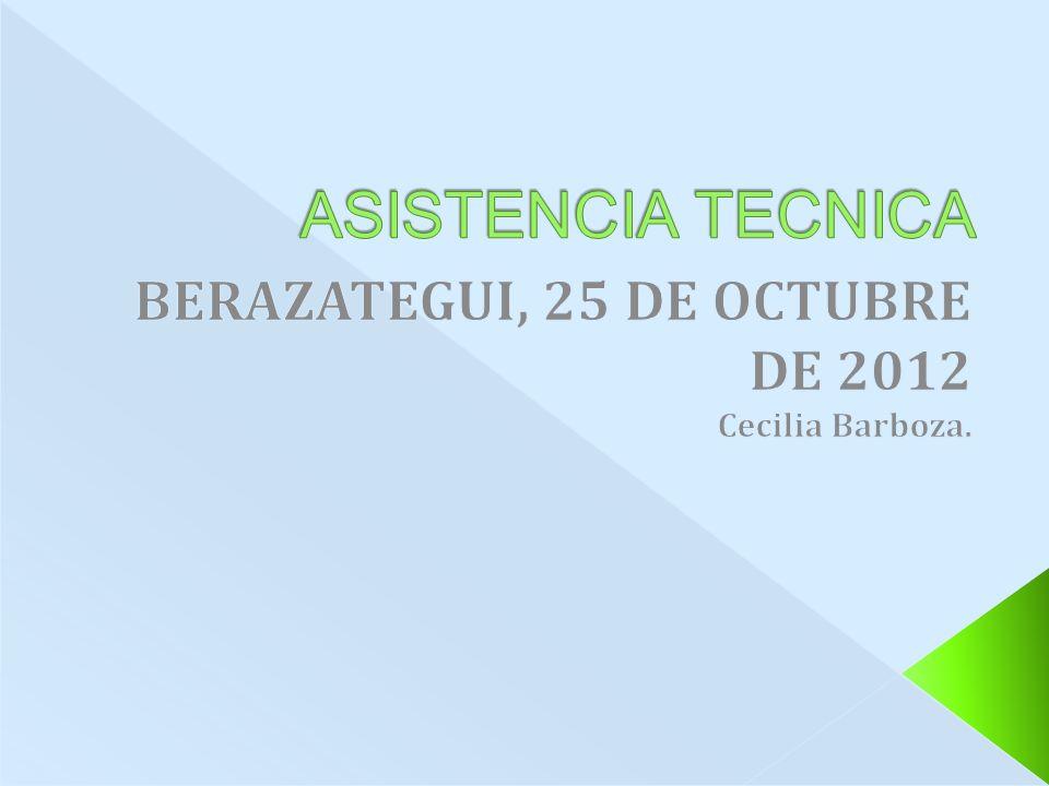 BERAZATEGUI, 25 DE OCTUBRE DE 2012 Cecilia Barboza.
