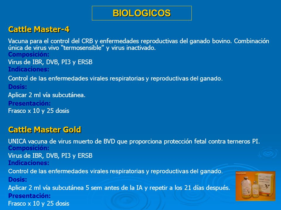 BIOLOGICOS Cattle Master-4 Cattle Master Gold