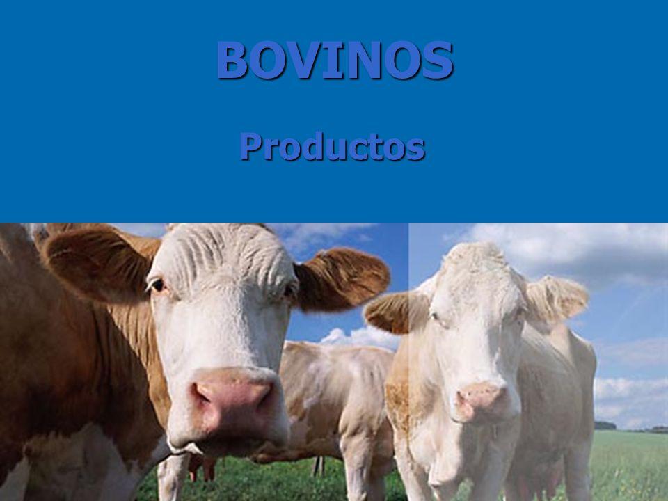BOVINOS Productos