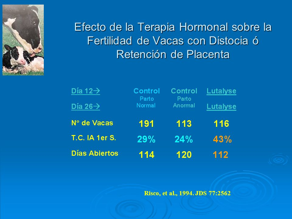 Efecto de la Terapia Hormonal sobre la Fertilidad de Vacas con Distocia ó Retención de Placenta