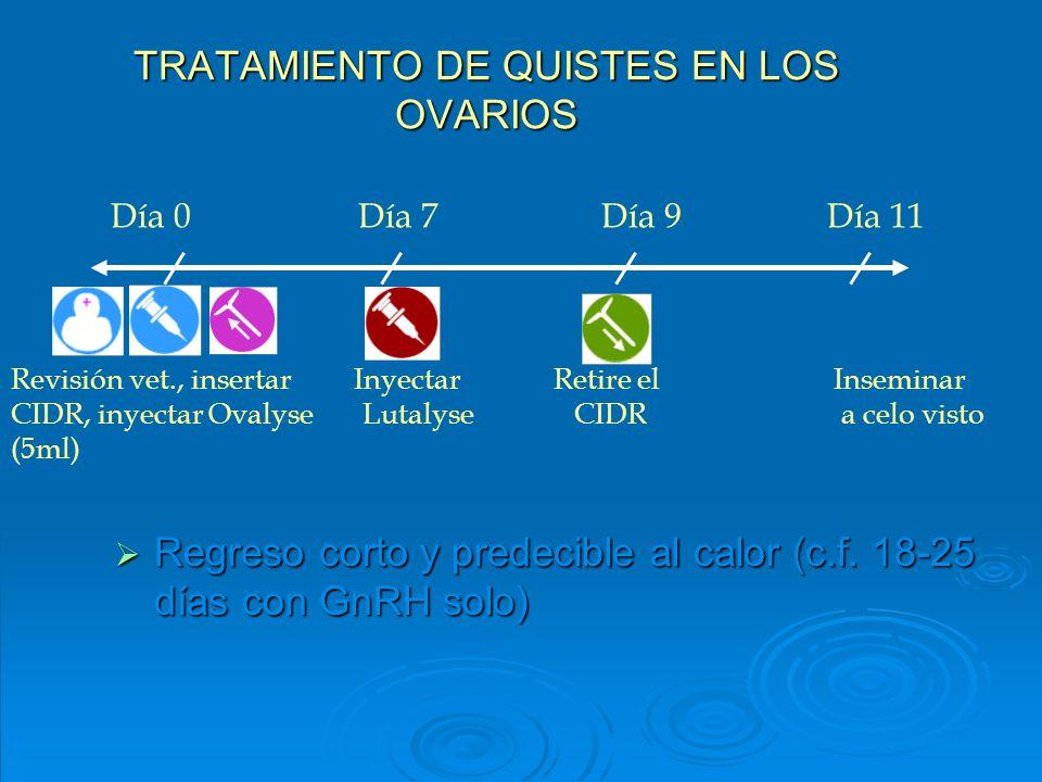 TRATAMIENTO DE QUISTES EN LOS OVARIOS