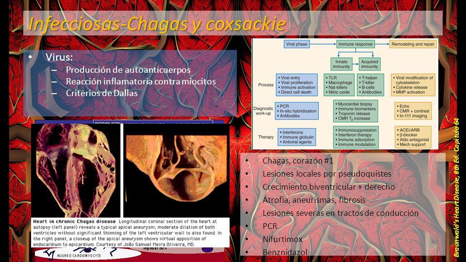 Infecciosas-Chagas y coxsackie