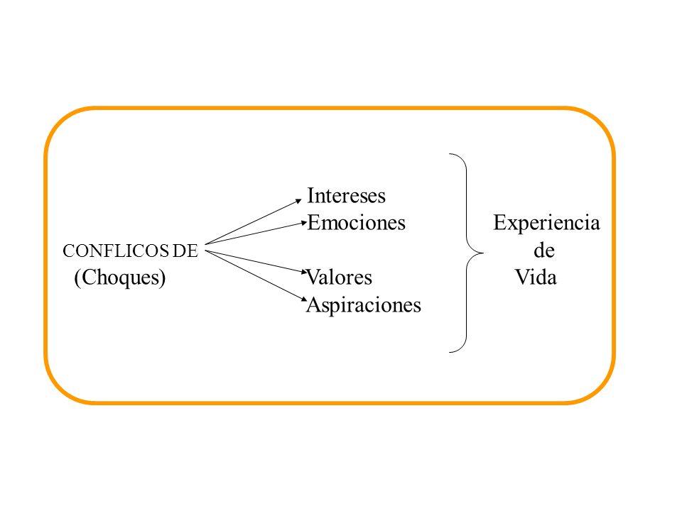 Fuentes de Conflictos Intereses Emociones Experiencia