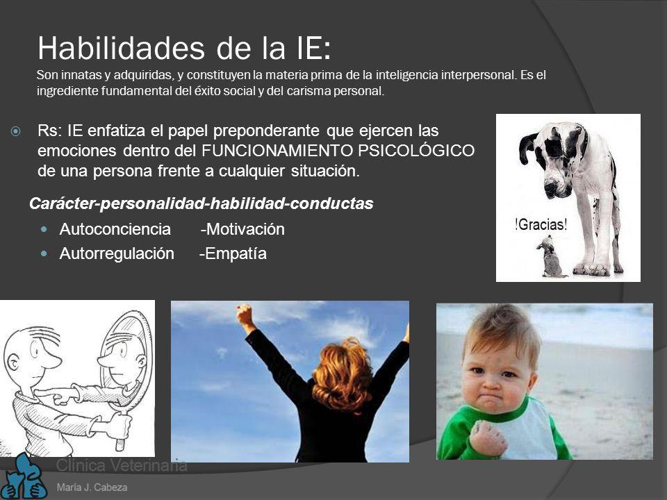 Habilidades de la IE: Son innatas y adquiridas, y constituyen la materia prima de la inteligencia interpersonal. Es el ingrediente fundamental del éxito social y del carisma personal.
