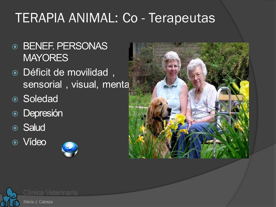 TERAPIA ANIMAL: Co - Terapeutas
