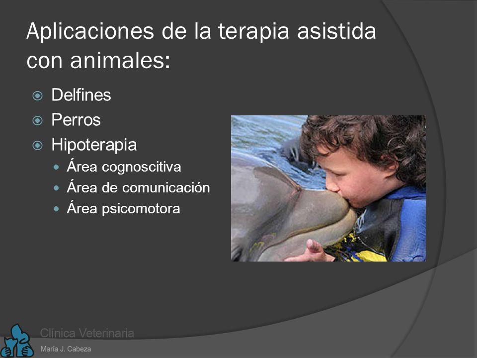 Aplicaciones de la terapia asistida con animales:
