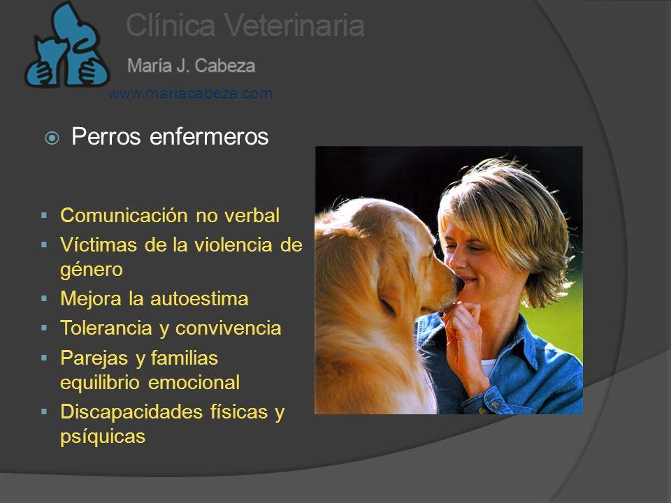 Perros enfermeros Comunicación no verbal