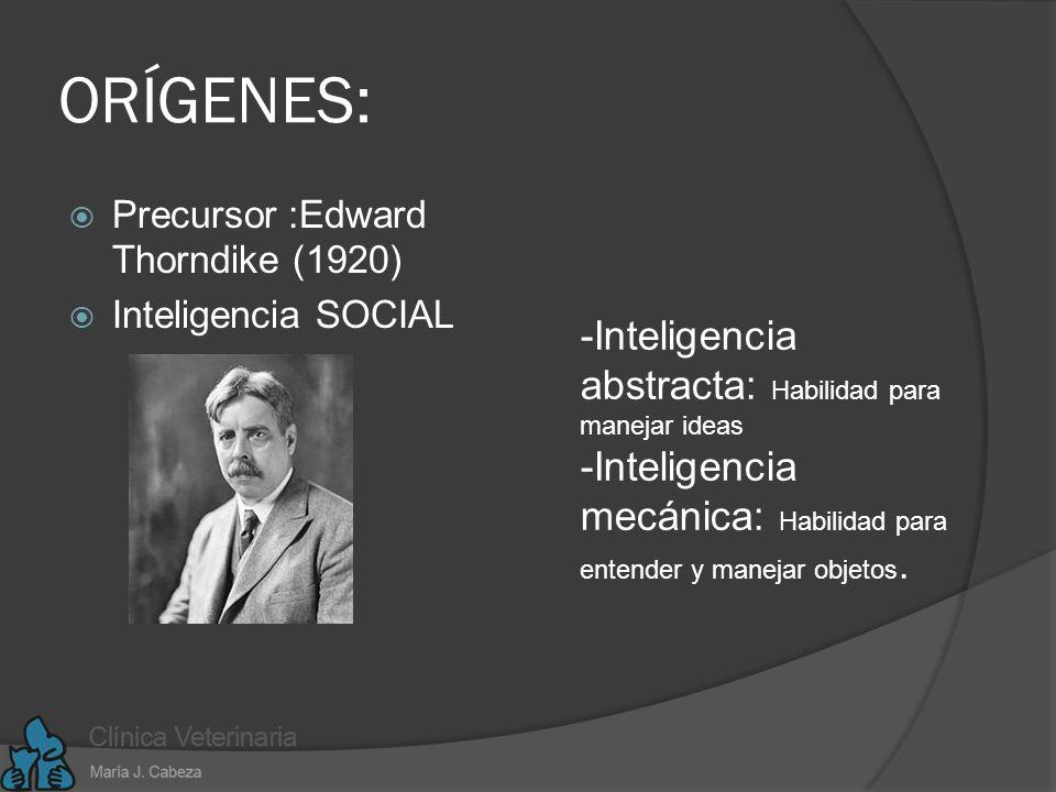 ORÍGENES: -Inteligencia abstracta: Habilidad para manejar ideas