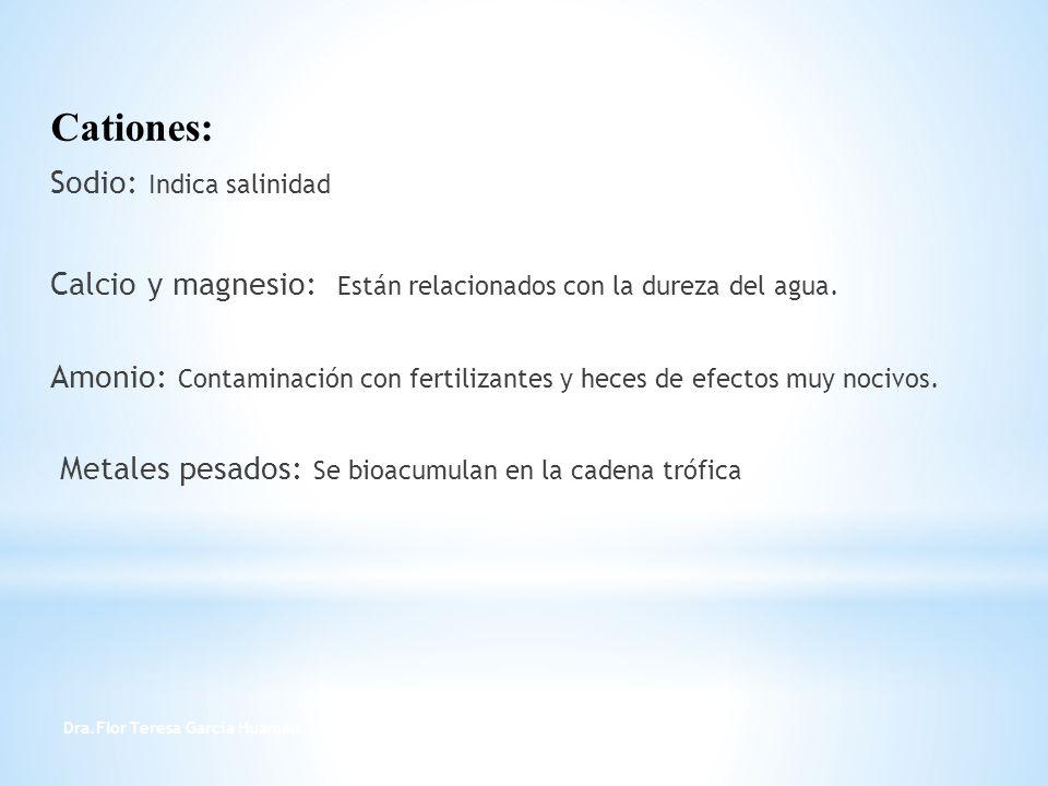 Cationes: Sodio: Indica salinidad