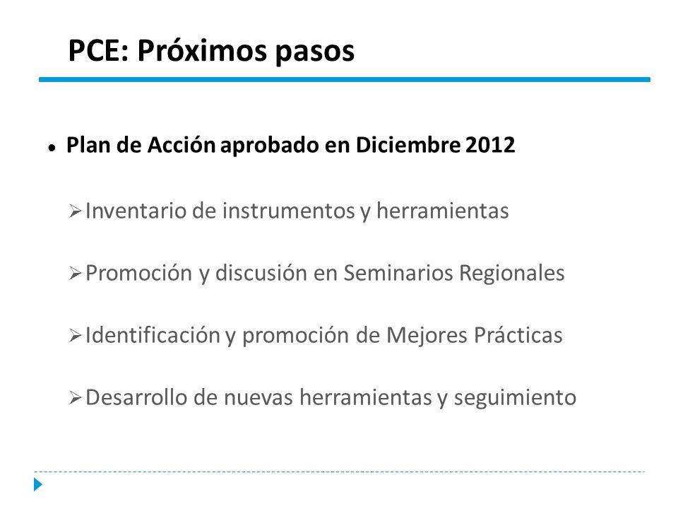 PCE: Próximos pasos Plan de Acción aprobado en Diciembre 2012