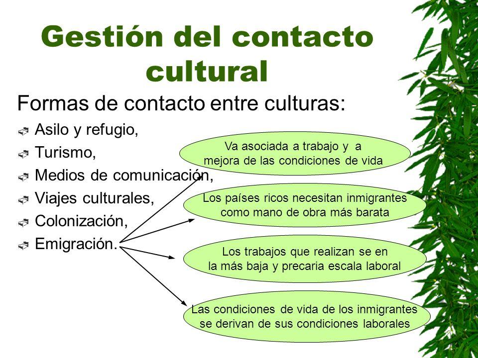 Gestión del contacto cultural