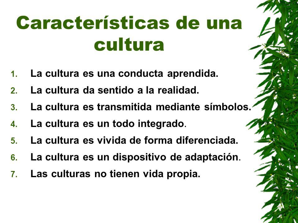 Características de una cultura