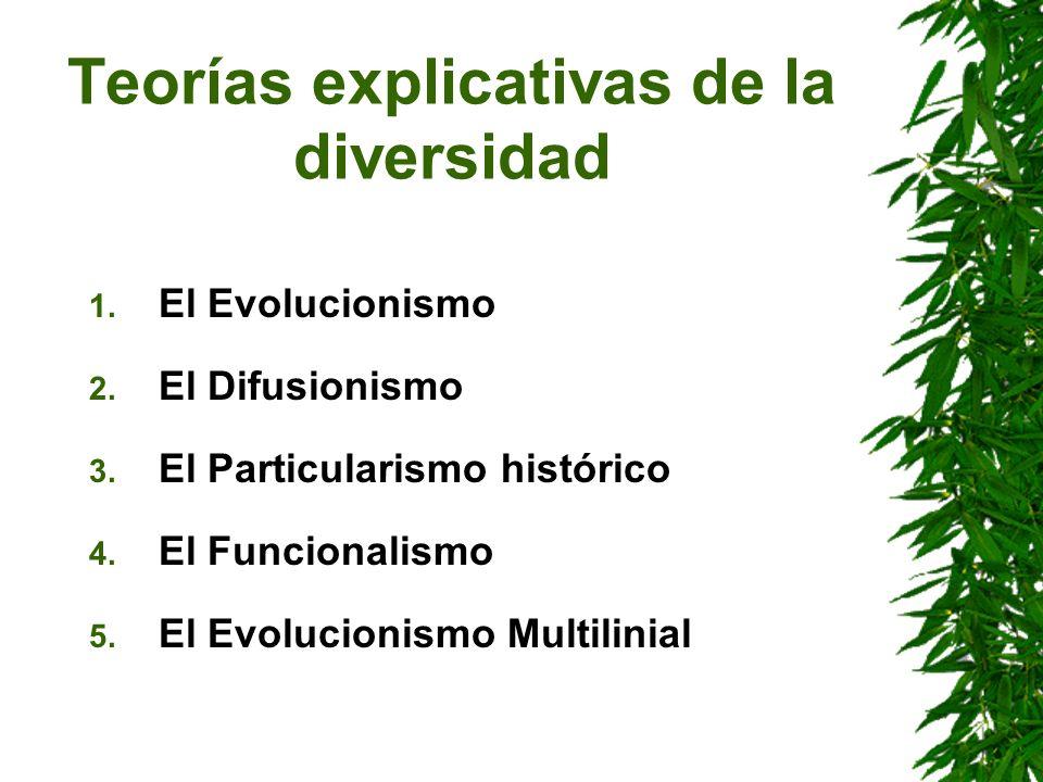 Teorías explicativas de la diversidad