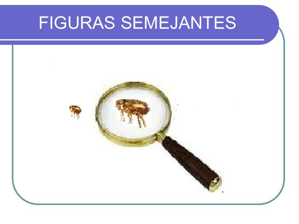 FIGURAS SEMEJANTES