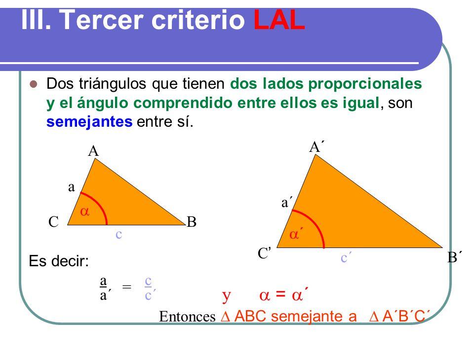 III. Tercer criterio LAL