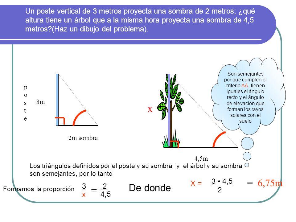 Un poste vertical de 3 metros proyecta una sombra de 2 metros; ¿qué altura tiene un árbol que a la misma hora proyecta una sombra de 4,5 metros (Haz un dibujo del problema).