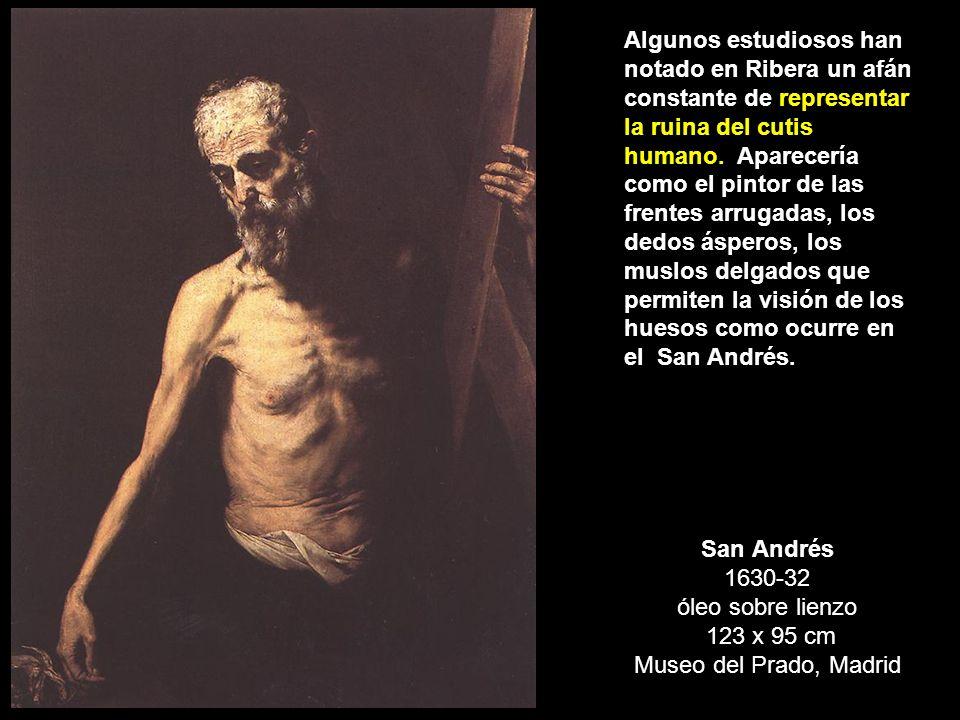 Algunos estudiosos han notado en Ribera un afán constante de representar la ruina del cutis humano. Aparecería como el pintor de las frentes arrugadas, los dedos ásperos, los muslos delgados que permiten la visión de los huesos como ocurre en el San Andrés.