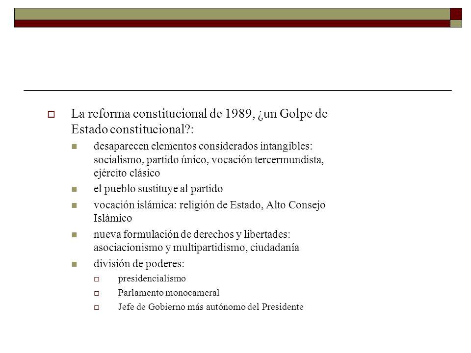 La reforma constitucional de 1989, ¿un Golpe de Estado constitucional