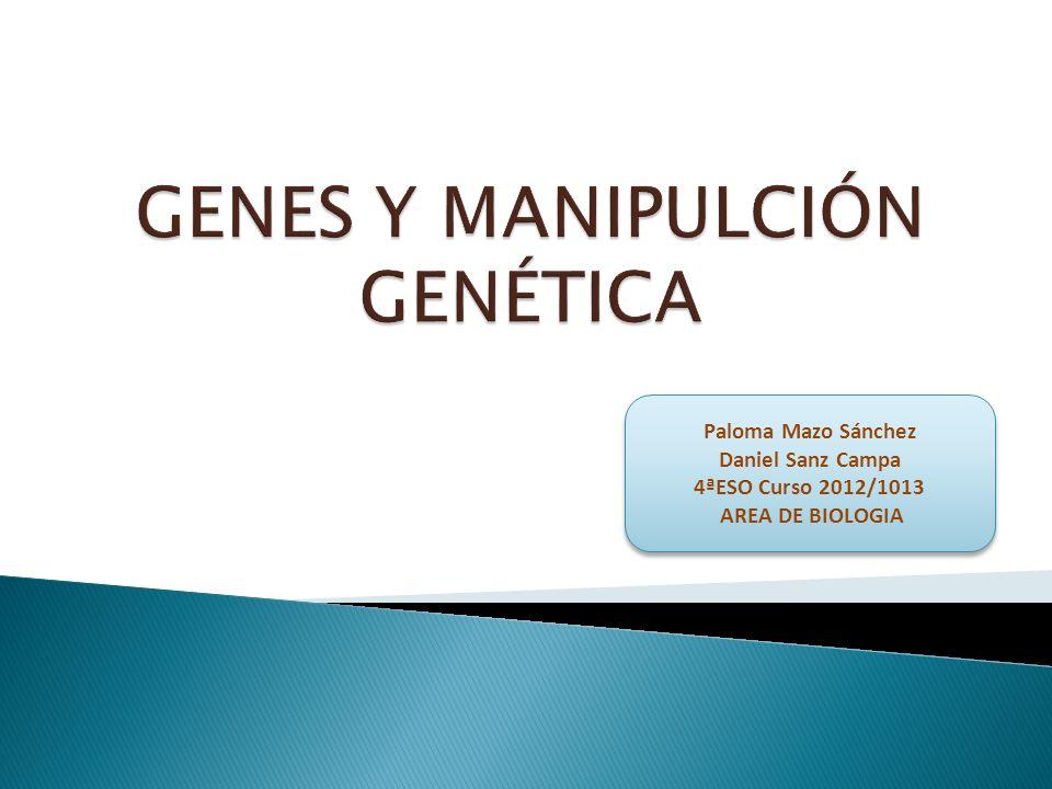 GENES Y MANIPULCIÓN GENÉTICA