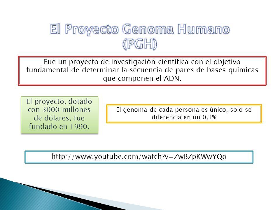 El Proyecto Genoma Humano (PGH)