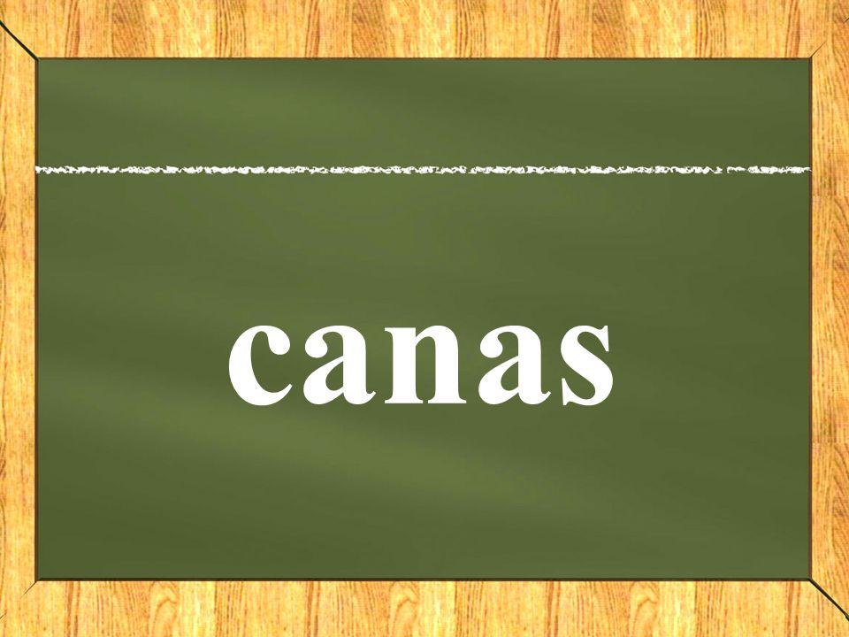 canas