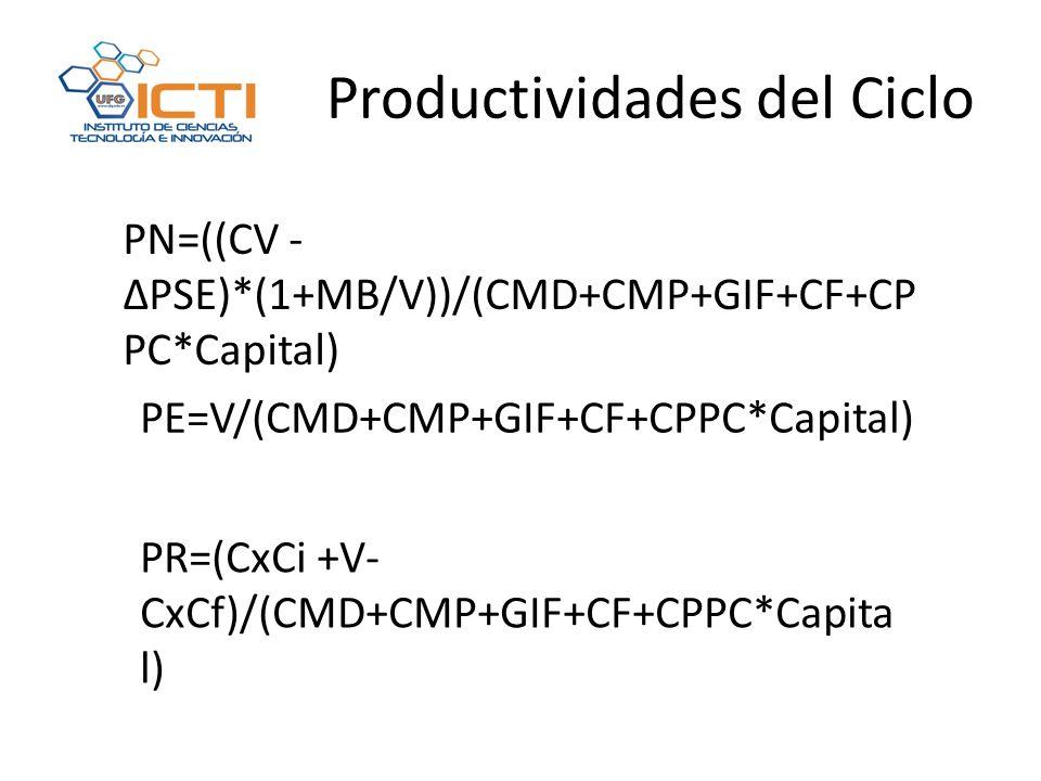 Productividades del Ciclo