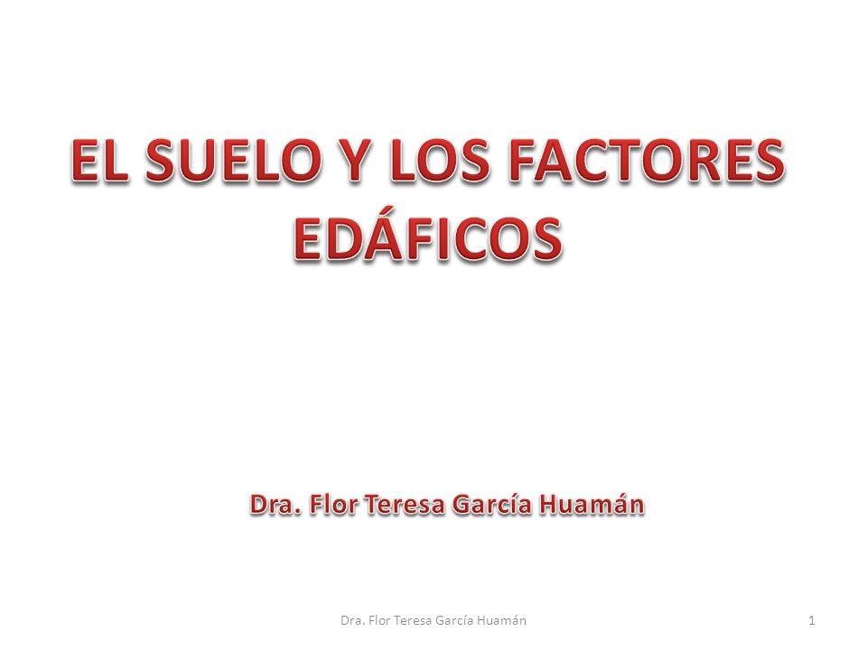 EL SUELO Y LOS FACTORES EDÁFICOS Dra. Flor Teresa García Huamán