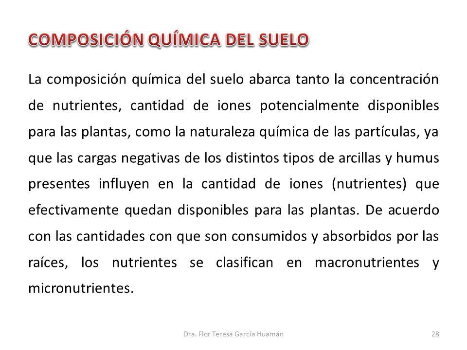 COMPOSICIÓN QUÍMICA DEL SUELO