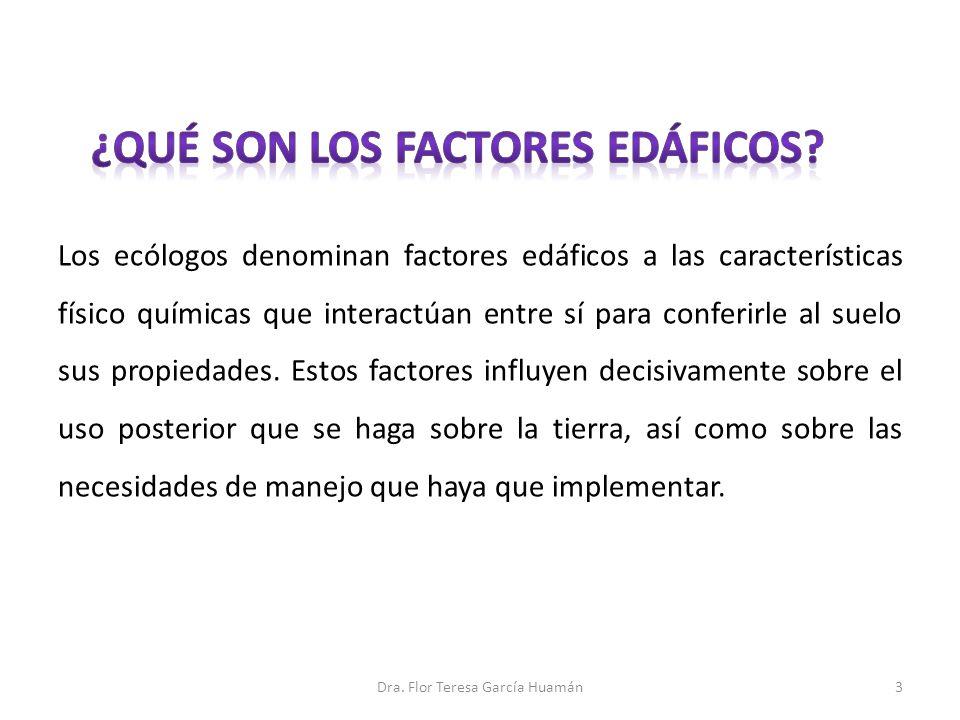 ¿qué son los factores edáficos