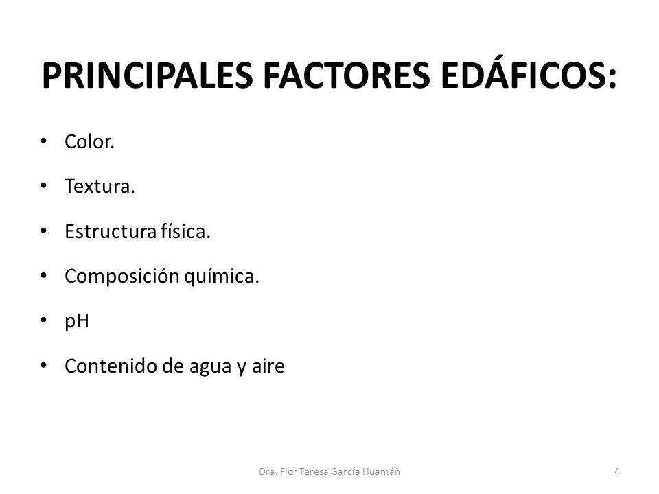 PRINCIPALES FACTORES EDÁFICOS: