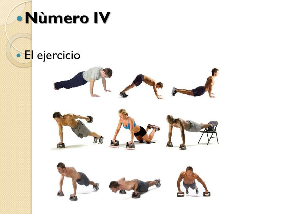 Nùmero IV El ejercicio