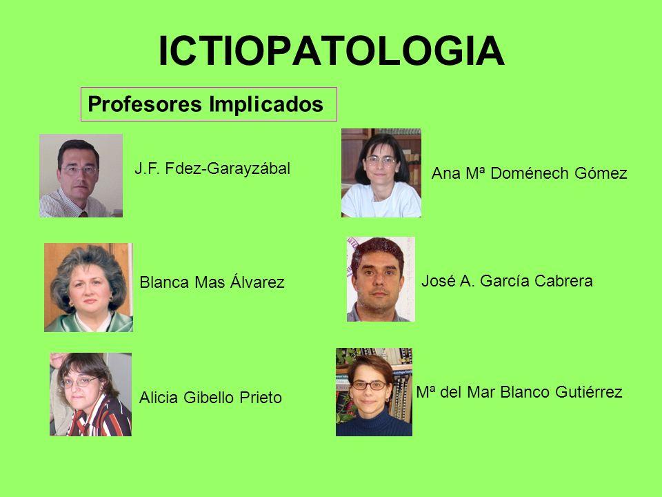 ICTIOPATOLOGIA Profesores Implicados J.F. Fdez-Garayzábal