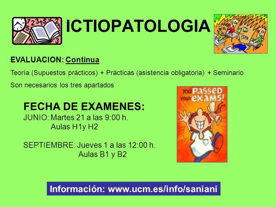Información: www.ucm.es/info/saniani