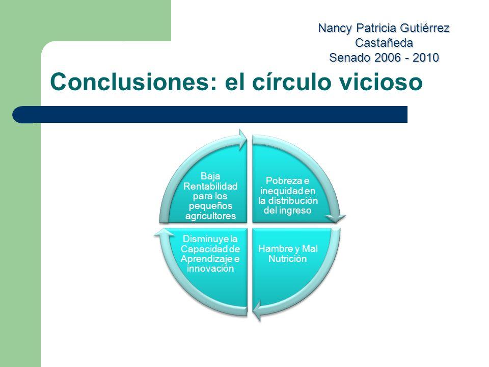 Conclusiones: el círculo vicioso