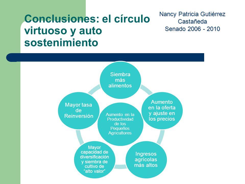 Conclusiones: el círculo virtuoso y auto sostenimiento