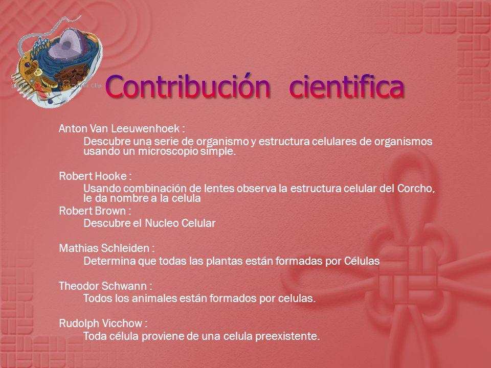 Contribución cientifica
