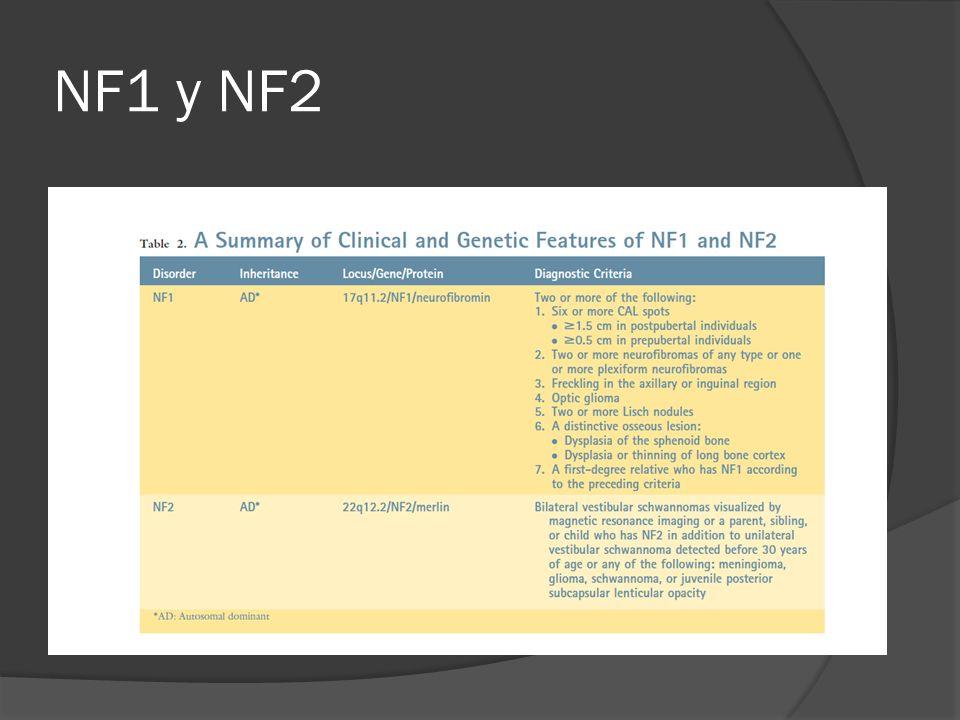 NF1 y NF2