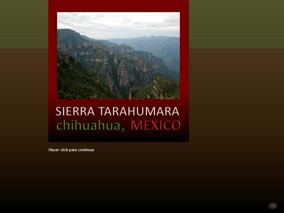 SIERRA TARAHUMARA chihuahua, MEXICO Hacer click para continuar