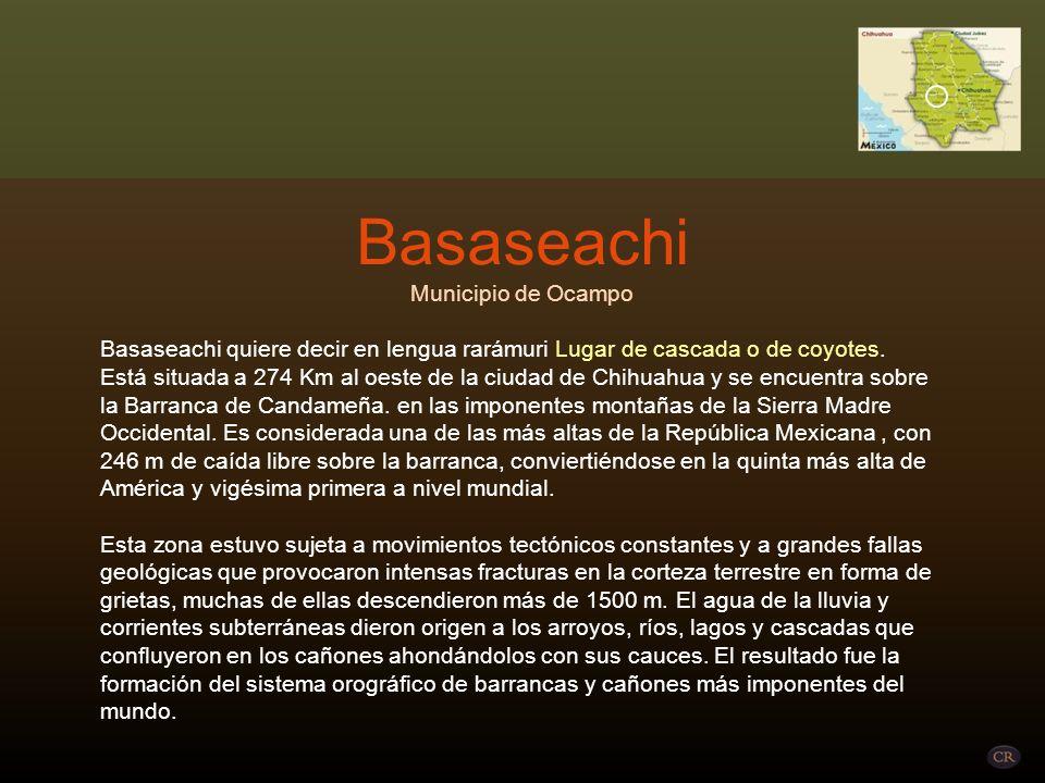 Basaseachi Municipio de Ocampo