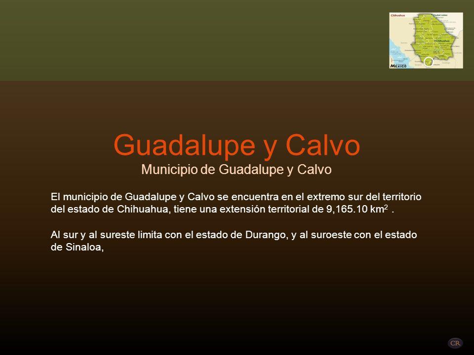 Municipio de Guadalupe y Calvo
