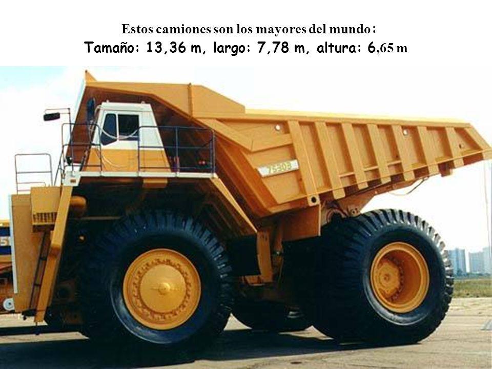 Estos camiones son los mayores del mundo: Tamaño: 13,36 m, largo: 7,78 m, altura: 6,65 m