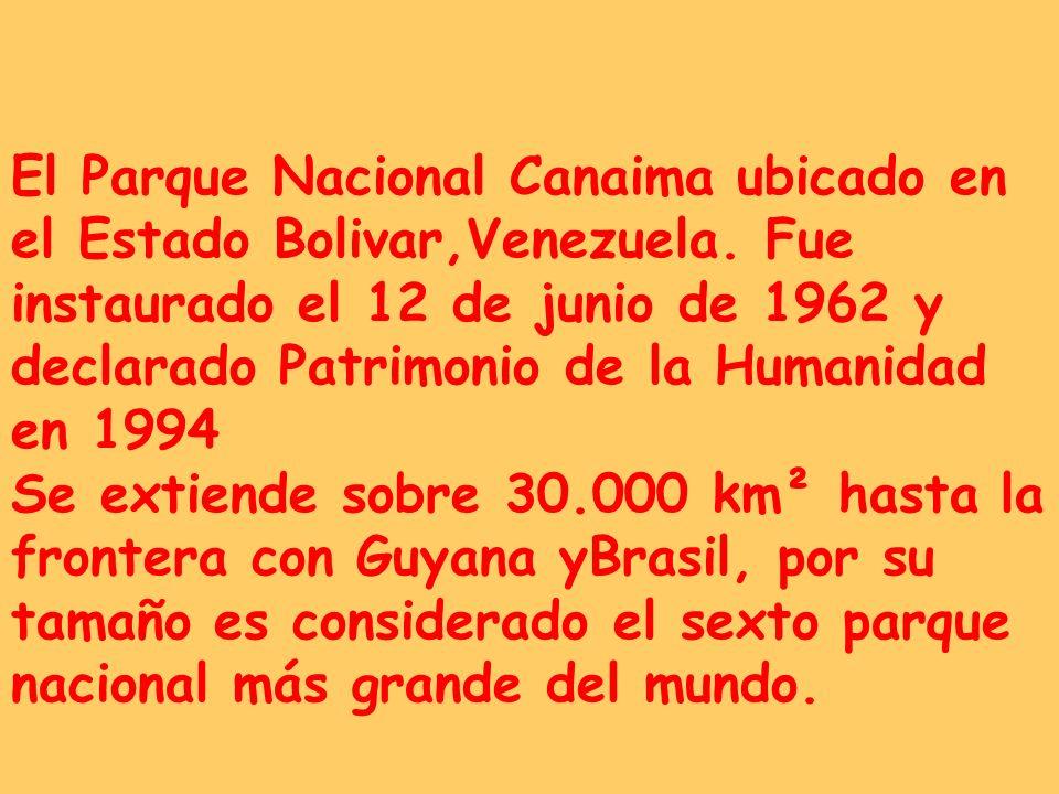 El Parque Nacional Canaima ubicado en el Estado Bolivar,Venezuela