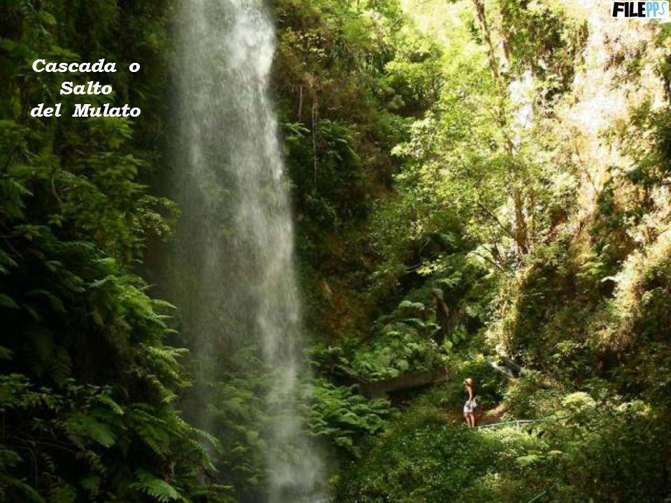 Cascada o Salto del Mulato
