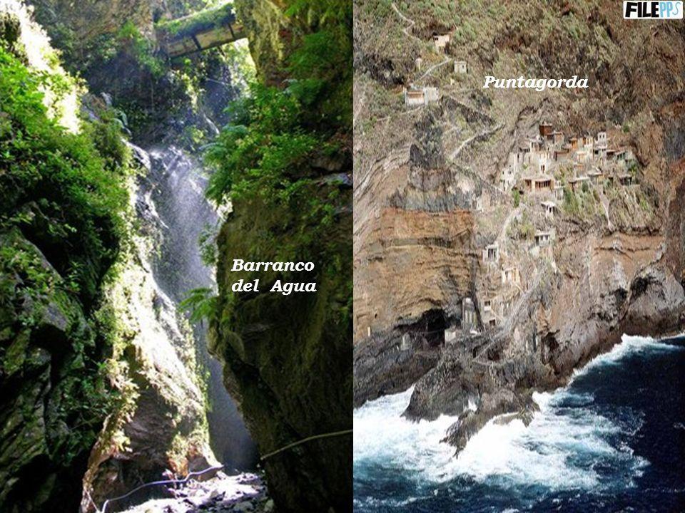 Puntagorda Barranco del Agua