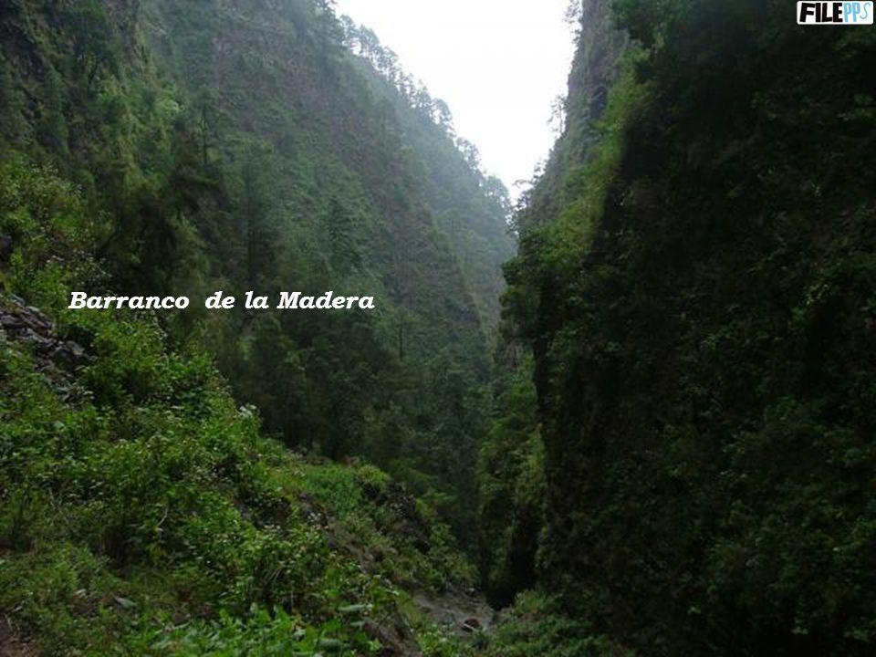 Barranco de la Madera